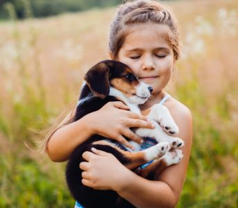 Richard Märkl Tierkrankenversicherung